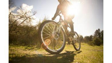 Jakie wyróżniamy rowery górskie?